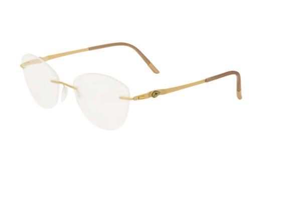 Очки Silhouette 5513_CJ 7520 54/17 для зрения купить